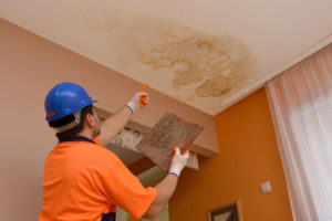 How to Keep Mold Growth in Your Home in Check