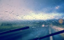 Inspect and Replace Your Car's Windshield Wiper Blades